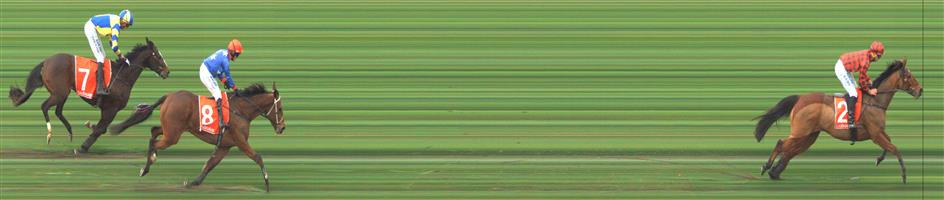 SANDOWN LAKESIDE Race 6 No. 7 Euroman  Result : 3rd at SP $6.50. In the main hurdle race of the day, settled midfield and made its challenge around the turn and looked like to be in the finish but weakened after the final jump and finished in third. Outcome -0.91 Units.