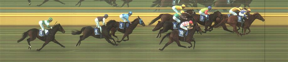 ECHUCA Race 4 No. 4 Redeemer  Result : Unplaced at SP $26.00. Settled in third though was beaten at top of the straight and finished towards the tail of the field. Outcome -0.20 Units.   ECHUCA Race 4 No. 7 Solar Cross  Result : Unplaced at SP $7.50. Pressed forward and lead. Though weakend out with still 400m to go and finished at the tail of the field. Outcome -0.77 Units.   ECHUCA Race 4 No. 9 Pequina Colina  Result : Unplaced at SP $10.00. Settled at the tail of the field and stuck to the inside for its run home and while too far back to figure in the finish, its run was respectable. Outcome -0.56 Units.