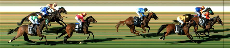 WODONGA Race 1 No. 5 Ferus  Result : 4th at SP $9.00. Settled in second on the rails and in the straight eased off the rails slightly and while kept on running on, was unable to match the leaders to finish in fourth about a length or so behind. Outcome -0.63 Units.