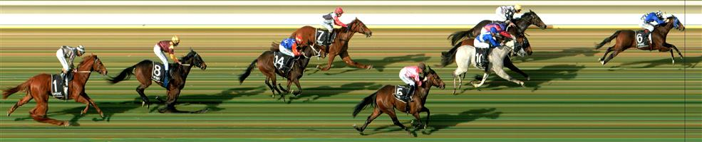 WODONGA Race 3 No. 12 Galactic Express  Result : 3rd at SP $17.00. After being three wide midfield the majority of the trip, went forward on the turn to try to run the leaders down but was unable to do s0, always being about a length or so behind to finish third. Outcome -0.31 Units.