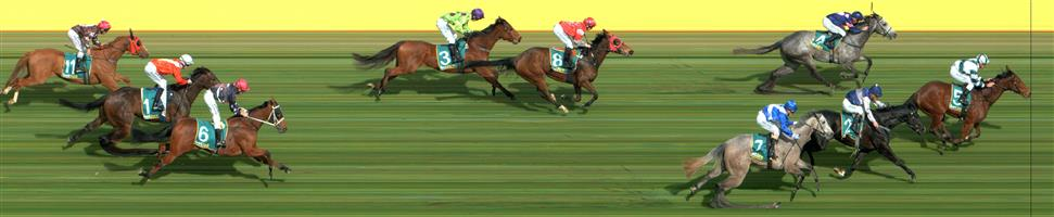 DONALD Race 3 No. 4 Mr Bodecker  Result : 3rd at SP $12.00. After settling behind the leaders, took the lead briefly in the straight before being challenged and weakened late to finish in a photo for third. Outcome -0.45 Units.