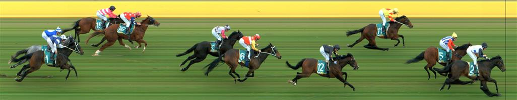 DONALD Race 5 No. 12 Uluru  Result : 4th at SP $2.50. Settled in a midfield position, one off the rails. In the straight was one of the widest runners but took a while to hit top gear and finished strongly to finish in fourth. Outcome -1.50 Units.