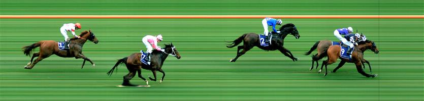 FLEMINGTON Race 9 No. 12 Satori  Result : Unplaced at SP $13.00. After settling midfield and presenting at the top of the straight quickly dropped out to finish in the last part of the field. Outcome -0.42 Units.