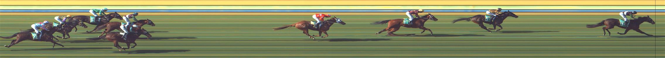BENDIGO Race 4 No. 13 Fields Of Heather  Result : Unplaced at SP $6.50. After being three wide midfield the trip, on the home turn moved up to the leaders but dropped out soon after to finish towards the tail of the field. Outcome -0.91 Units.