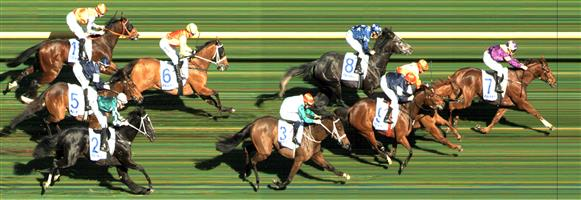 CAULFIELD Race 3 No. 10 Sylpheed  Result : 2nd at SP $16.00. After settling behind the leaders, came off the to make its run home and was finishing well with a wall of horses and managed to hold second in a close finish. Outcome -0.33 Units.