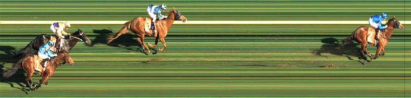 CAULFIELD Race 5 No. 1 Dubious  Result : 4th at SP $3.20. After settling at the tail of the field, was being niggled at heavily prior to the turn and only really got going late when the race was over to finish in fourth. Outcome -1.50 Units.   NO IMAGE AVAILABLE   KEMBLA GRANGE Race 6 No. 12 Niewand  Result : Unplaced at SP $7.50. Settled on the rails in a three way share of the lead. After initially finding in the straight for a long did struggle in the final couple of hundred of meters and finish a little worse than midfield. Outcome -0.77 Units.