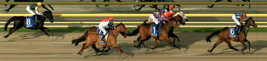 RACING.COM  SYNTH Race 6 No. 4 Double The Magic  Result : 3rd at SP $9.50. After settling in third, just behind the leaders, had every chance in the straight but unable to match the speed of the winner who came from midfield late and finished in a photo for second, third and fourth. Outcome -0.58 Units.
