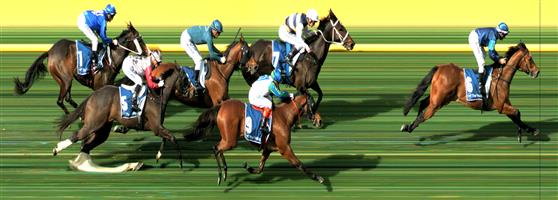MOONEE VALLEY Race 4 No. 10 Street Icon  Result : Unplaced at SP $5.50. Always out the back, never a winning chance. Outcome -1.11 Units.