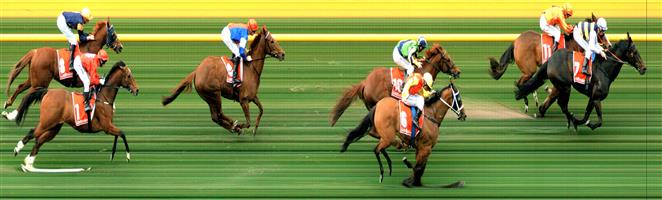 MOONEE VALLEY Race 6 No. 9 Mosh Music  Result : Unplaced at SP $4.40. Settled in the last part of the eight horse field. Ridden along from the 600m mark but only battled away to finish midfield. Outcome -1.47 Units.     NO IMAGE AVAILABLE  MORPHETTVILLE Race 7 No. 4 Mortar Platoon  Result : Unplaced at SP $26.00. Always out the back, never a winning chance. Outcome -0.20 Units.  MORPHETTVILLE Race 7 No. 11 Saddle The Sun  Result : Unplaced at SP $11.00. Settled in fourth, kept to the inside for the run home and just battled to the line without ever looking threatening. Outcome -0.50 Units.     NO IMAGE AVAILABLE  SEYMOUR Race 7 No. 11 No Reward  Result : 2nd at SP $4.80. Settled outside the leader and up the straight it was battle between these two horses and No Reward was just nosed out in a photo finish. Outcome -1.32 Units.  SEYMOUR Race 7 No. 15 Toms Knight  Result : Unplaced at SP $14.00. Always out the back, never a winning chance. Outcome -0.38 Units.