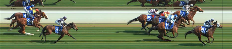 SWAN HILL Race 2 No. 11 Kasimba  Result : 3rd at SP $3.00. After sitting outside the leader in the run, came down the middle of the track and while possibly hitting the lead at stages in the straight, was grabbed with about 100m to go and finished in third. Outcome -1.50 Units.