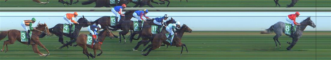 SWAN HILL Race 3 No. 9 Yitai Loyalty  Result : 2nd at SP $5.00. After settling in third, just behind the leader, moved up three wide on the turn to make its move but was quickly reined in by the eventual winner while Yitai Loyalty ran on strongly at the end to claim second. Outcome -1.25 Units.