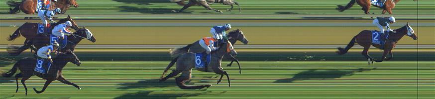 SWAN HILL Race 8 No. 10 Pequina Colina  Result : Unplaced at SP $7.50. Always out towards the tail of the field and never appeared likely for the win. Outcome -0.77 Units.