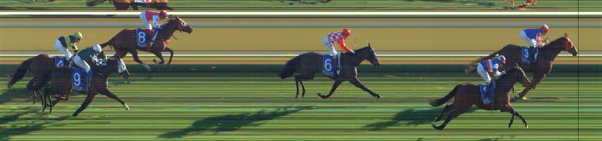 SWAN HILL Race 9 No. 8 Lope De Field  Result : 4th at SP $7.00. After settling a length or so behind the leaders in fourth, kept to the inside in the straight but tired in the dying stages to finish in fourth. Outcome -0.83 Units.