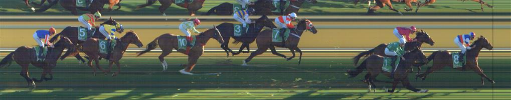 SWAN HILL Race 10 No. 5 Sang Choi Bao  Result : Unplaced at SP $12.00. Always out the back, never a winning hope. Outcome -0.45 Units.  SWAN HILL Race 10 No. 6 Magnesprit  Result : Unplaced at SP $17.00. After settling midfield, clear run in the straight but unable to finish it off to finish midfield. Outcome -0.31 Units.