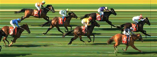 MORNINGTON Race 3 No. 12 Groot  Result : 3rd at SP $5.00. After settling in a share of the lead was just unable to hold off some of the fast finishing back markers and finished in third. Outcome -1.25 Units.