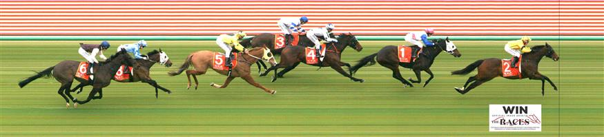 MURRAY BRIDGE GH Race 2 No. 6 Casa Larada  Result : Unplaced at SP $10.00. Always out the back and never a winning hope in the straight. Outcome -0.56 Units.