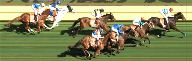 CAULFIELD Race 4 No. 5 Lord Fandango  Result : Unplaced at SP $31.00. Always towards the back, never threatening for victory. Outcome -0.17 Units.