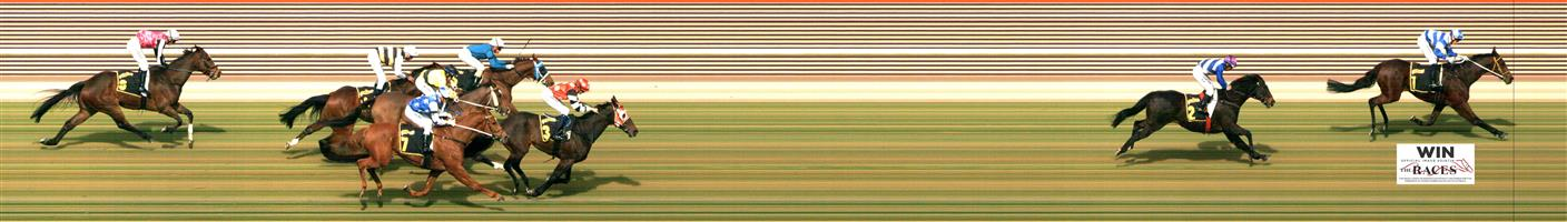 MORPHETTVILLE P Race 3 No. 4 Condamine  Result : Unplaced at SP $8.00. Always towards the back, never threatening for victory. Outcome -0.71 Units.