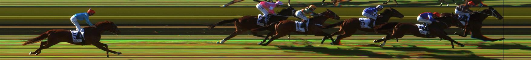 WARRACKNABEAL Race 7 No. 4 Buena Veloz  Result : 2nd at SP $4.00. After settling at the tail of the field, was fast finishing as the widest runner but just ran out of ground to run down the leader. Outcome -1.50 Units.