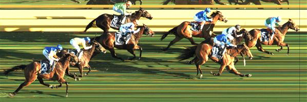 CAULFIELD Race 8 No. 3 Humidor  Result : Unplaced at SP $26.00. Always towards the back, never troubling the winners. Outcome -0.20 Units.  CAULFIELD Race 8 No. 6 Cliffs Edge  Result : Unplaced at SP $12.00. After settling in third, dropped away in the straight to finish towards the tail of the field. Outcome -0.45 Units.