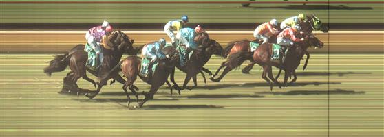 BENALLA Race 2 No. 2 Campese   Result : 2nd at SP $5.00. Settled in third and in the straight, Campese looked to run down the leader but just missed by a nose despite finishing hard. Outcome -1.25 Units.