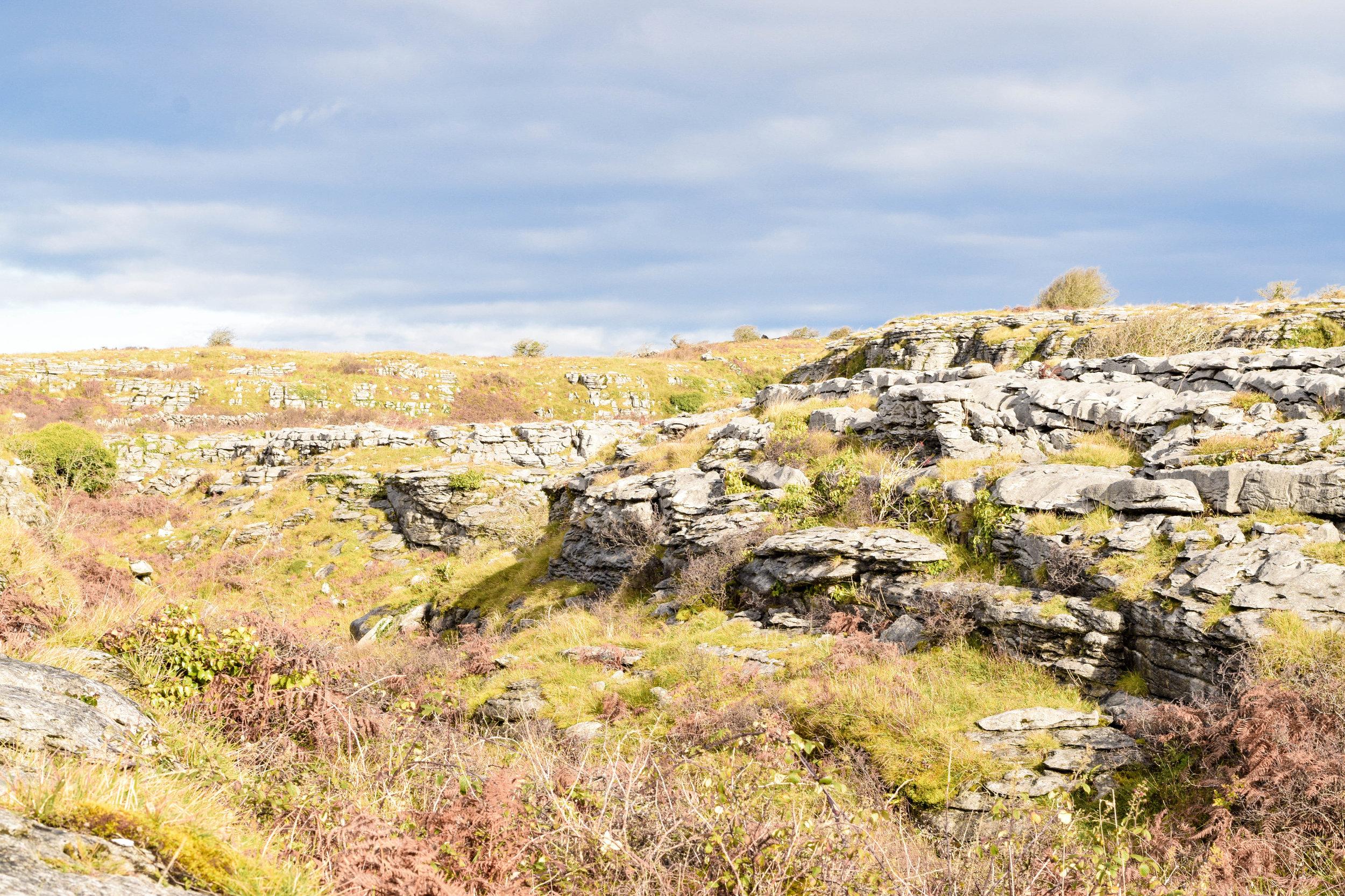 Burren-1.jpg