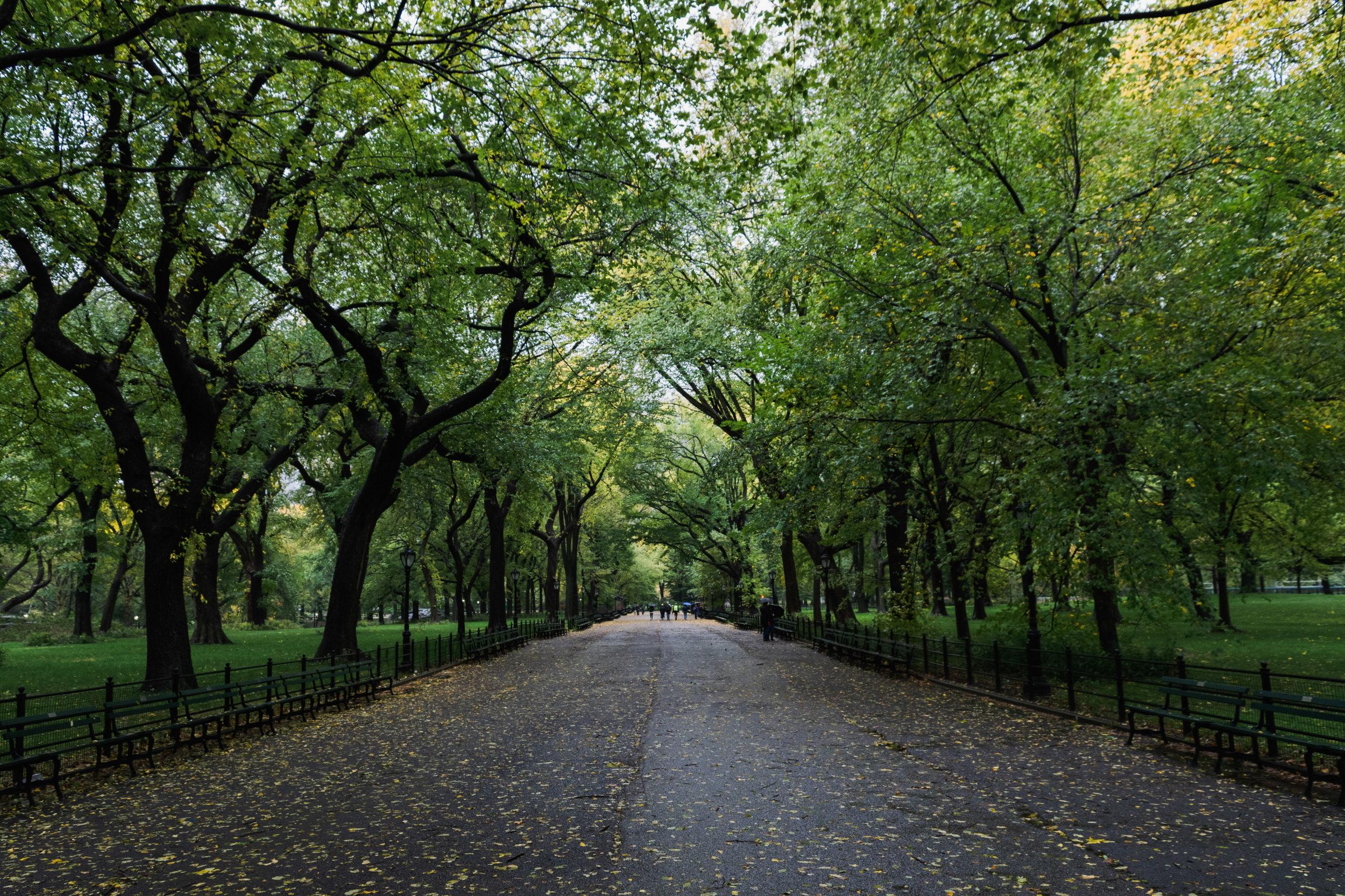 NYC October-10.jpg