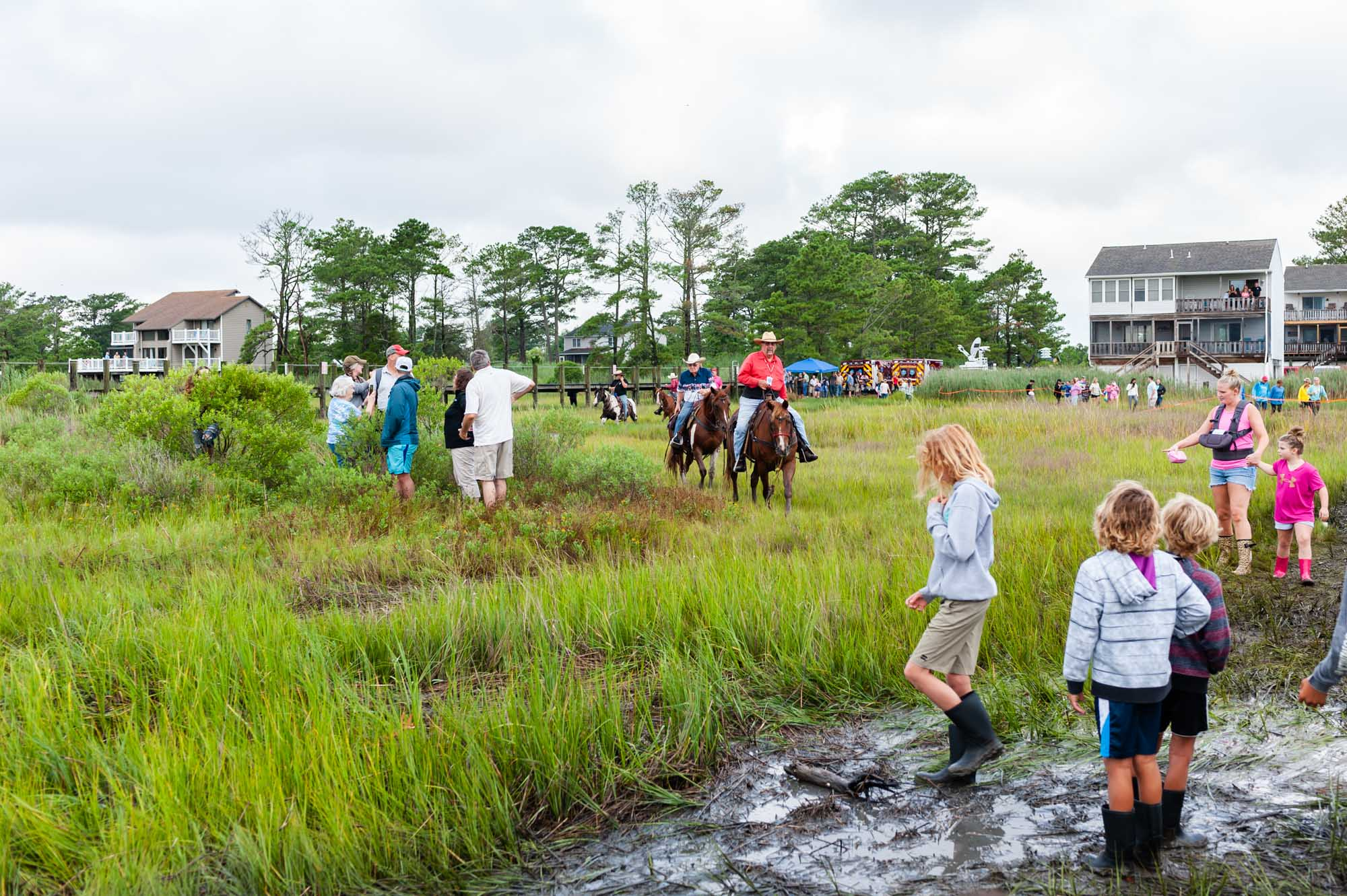 EmilyLewisCreative_20190724_Chincoteague Pony Swim-4.jpg