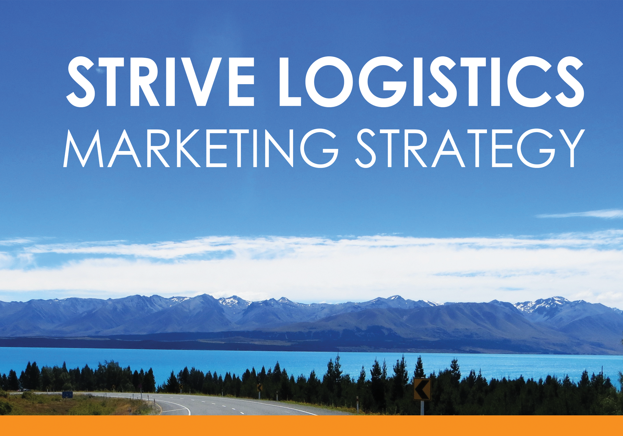 Marketing Strategy (2016)