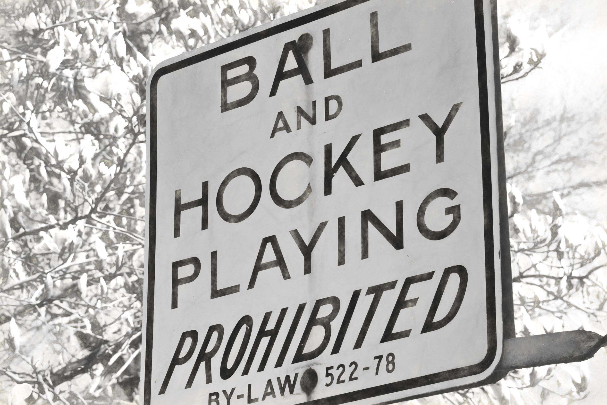 _DSC0241 no hockey sign dull gray.jpg