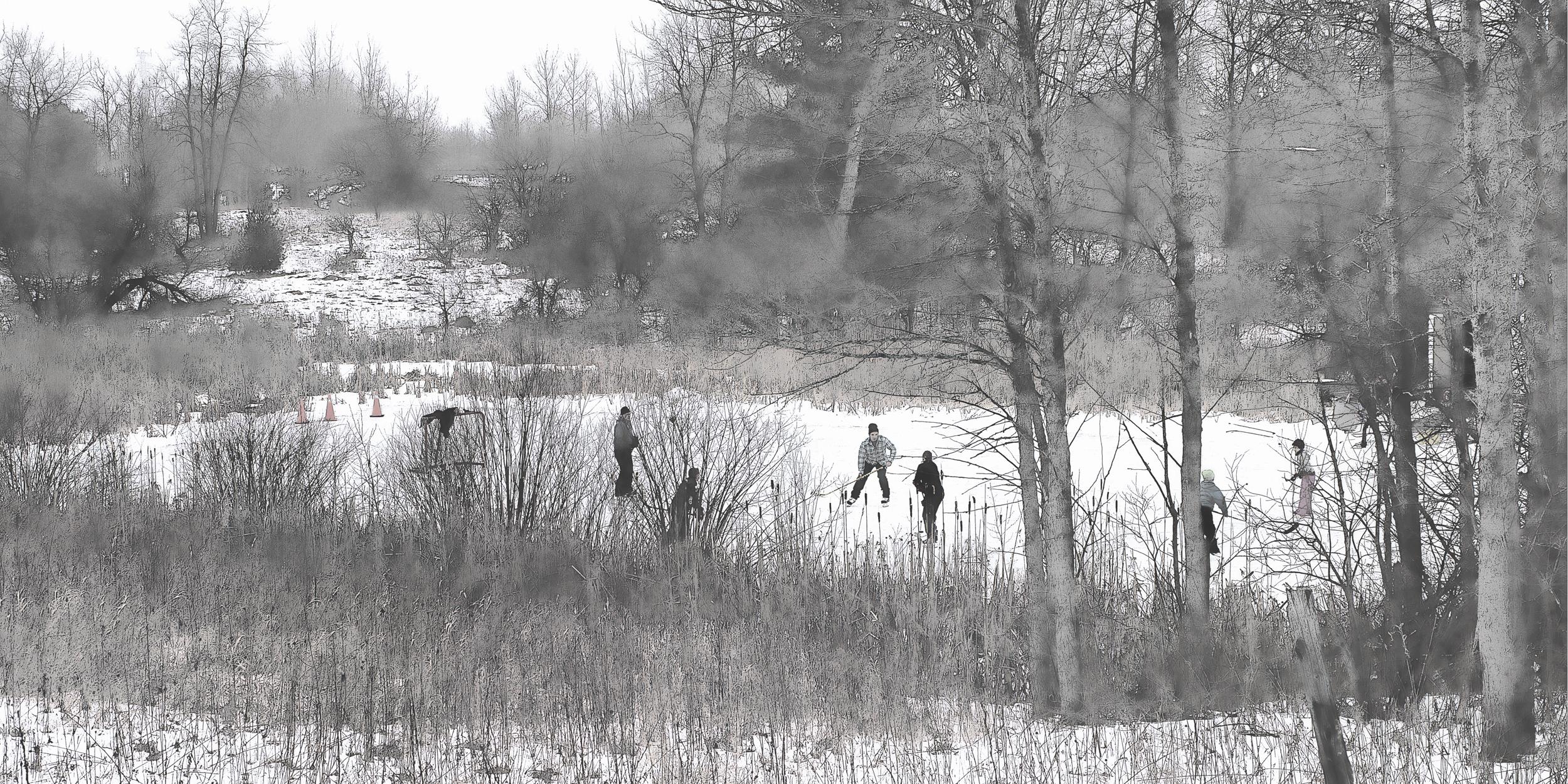 _DSC4462 Pond Hockey 1  whisper gray.jpg