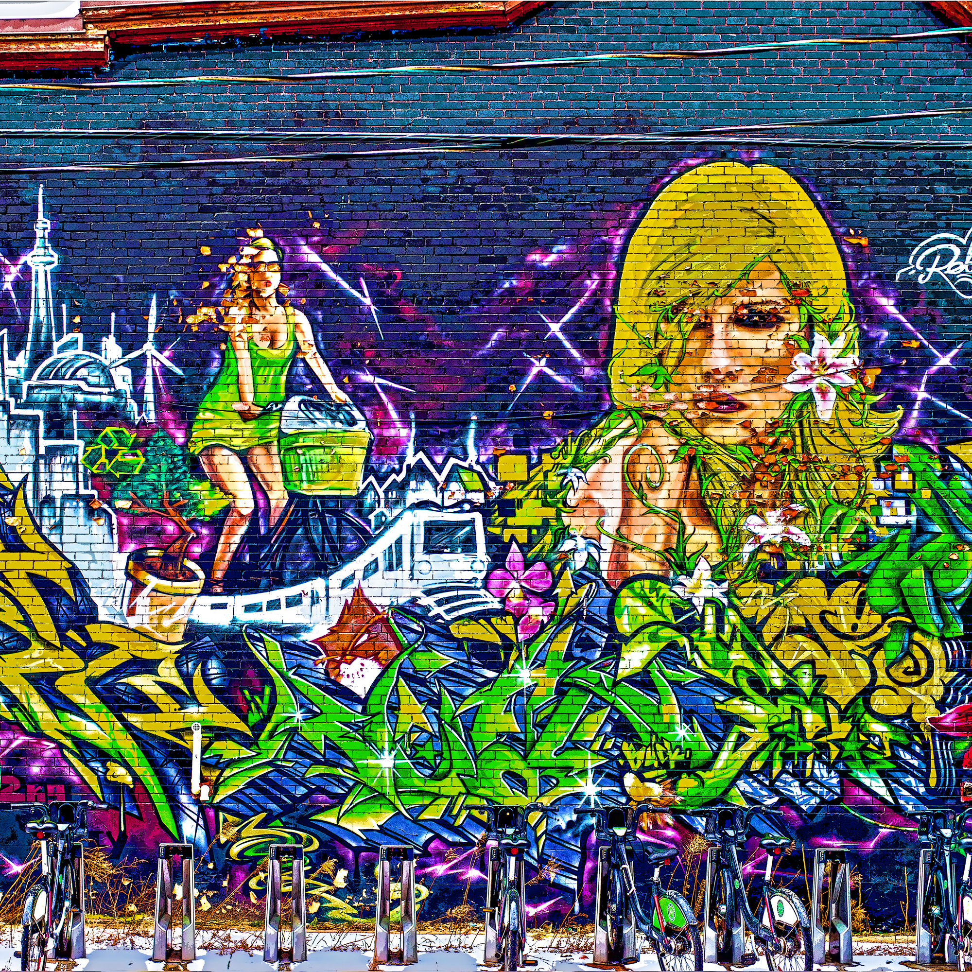 _DSC8920 Toronto Mural 3 3 small.jpg