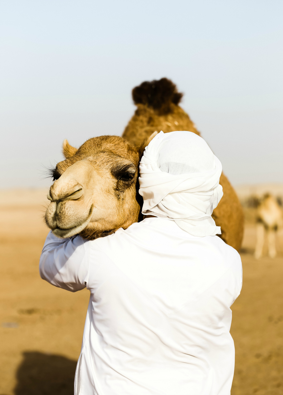 Traveling to the United Arab Emirates & The Middle East Culture