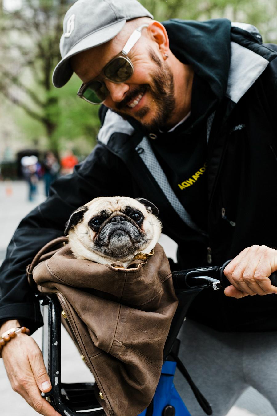 New York City Street Photography Messenger Bike & Dog Portrait