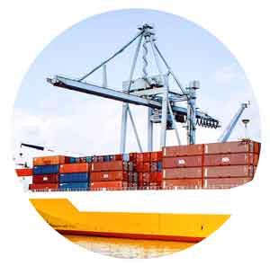PROJECTS - Oversized cargo, crane lifting, RORO, heavy lift.