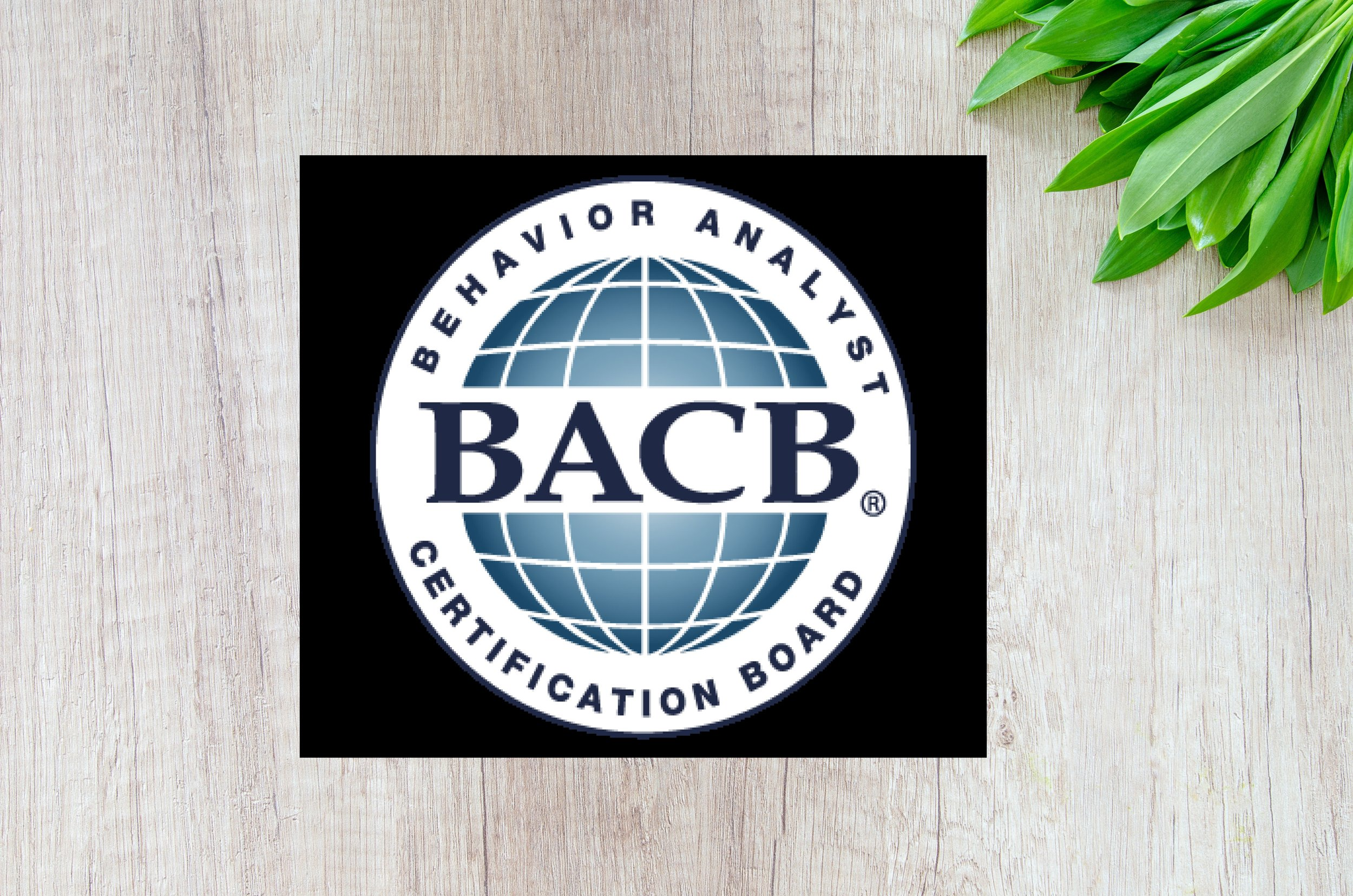 BCBA Supervision - We provide supervision according to the BACB Experience Standards for potential BCBAs or RBTs.