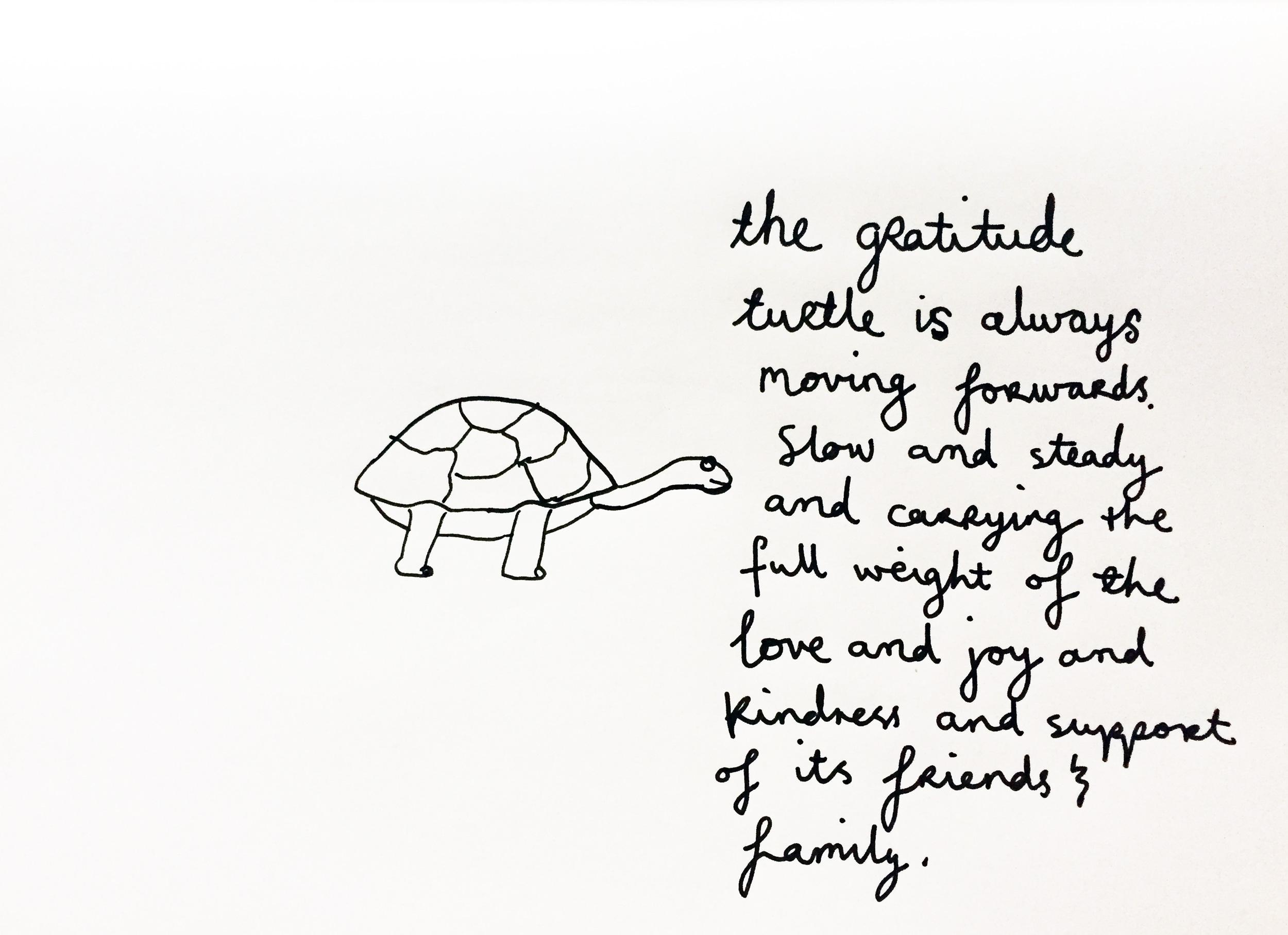 A grateful turtle. Drawing Luke Hockley.