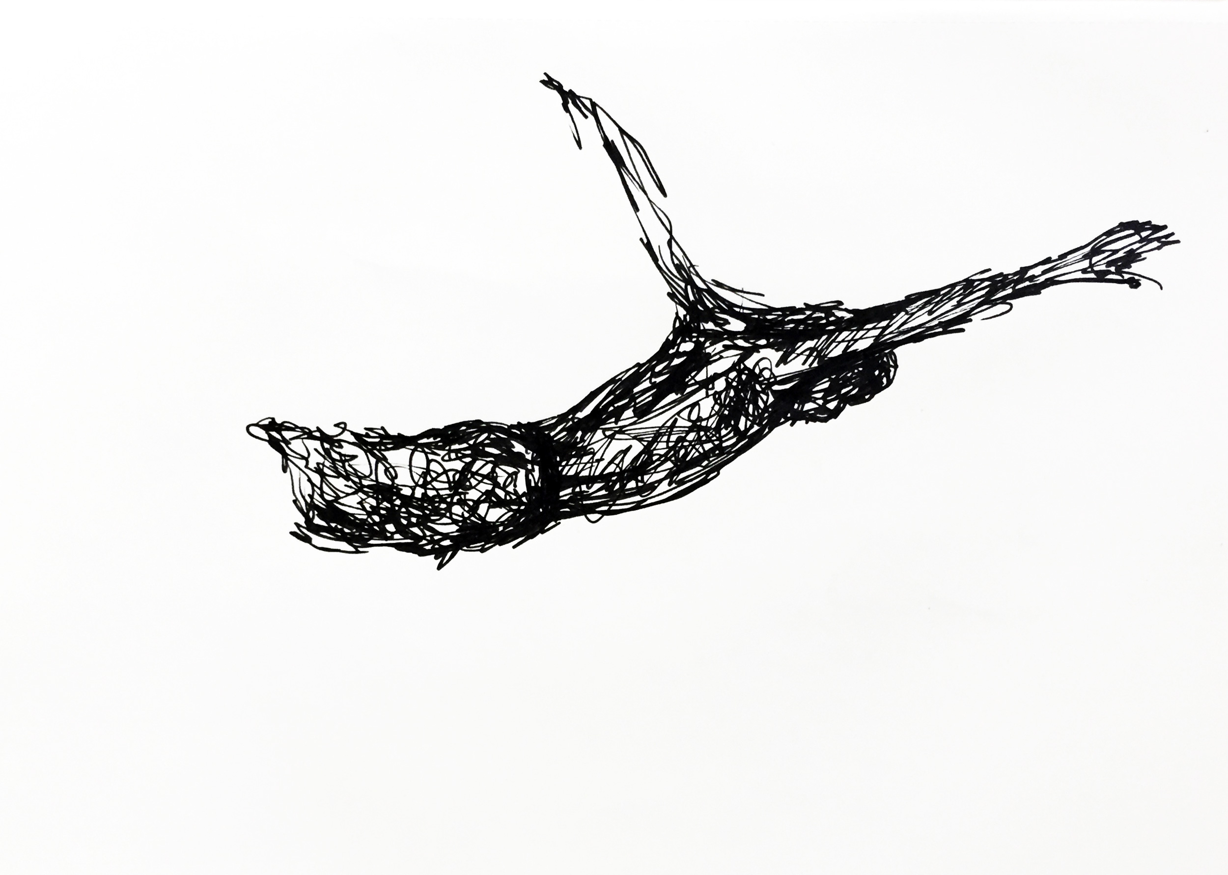 Free falling. Drawing Luke Hockley