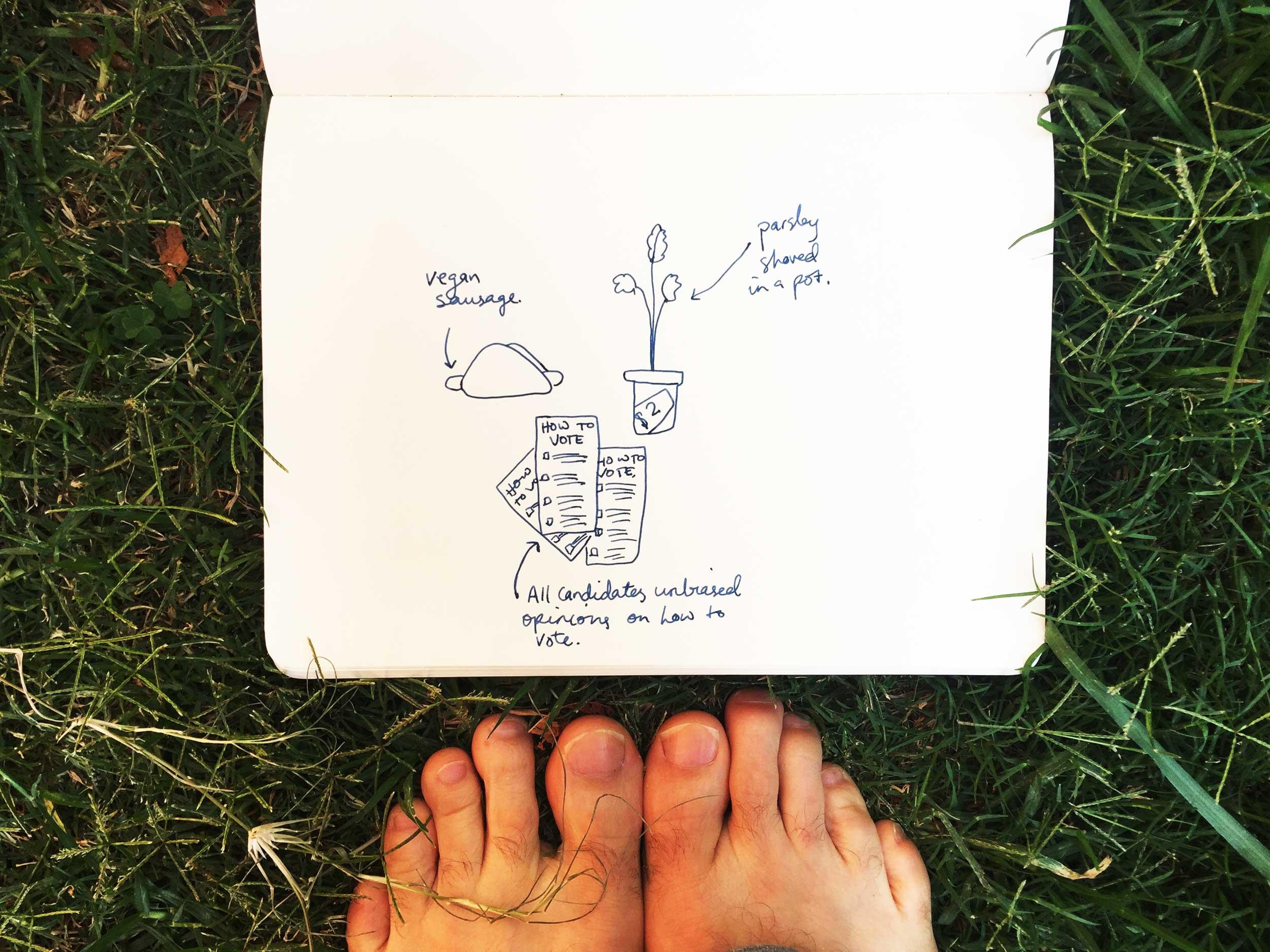 A vegan sausage sizzle. Drawing Luke Hockley.