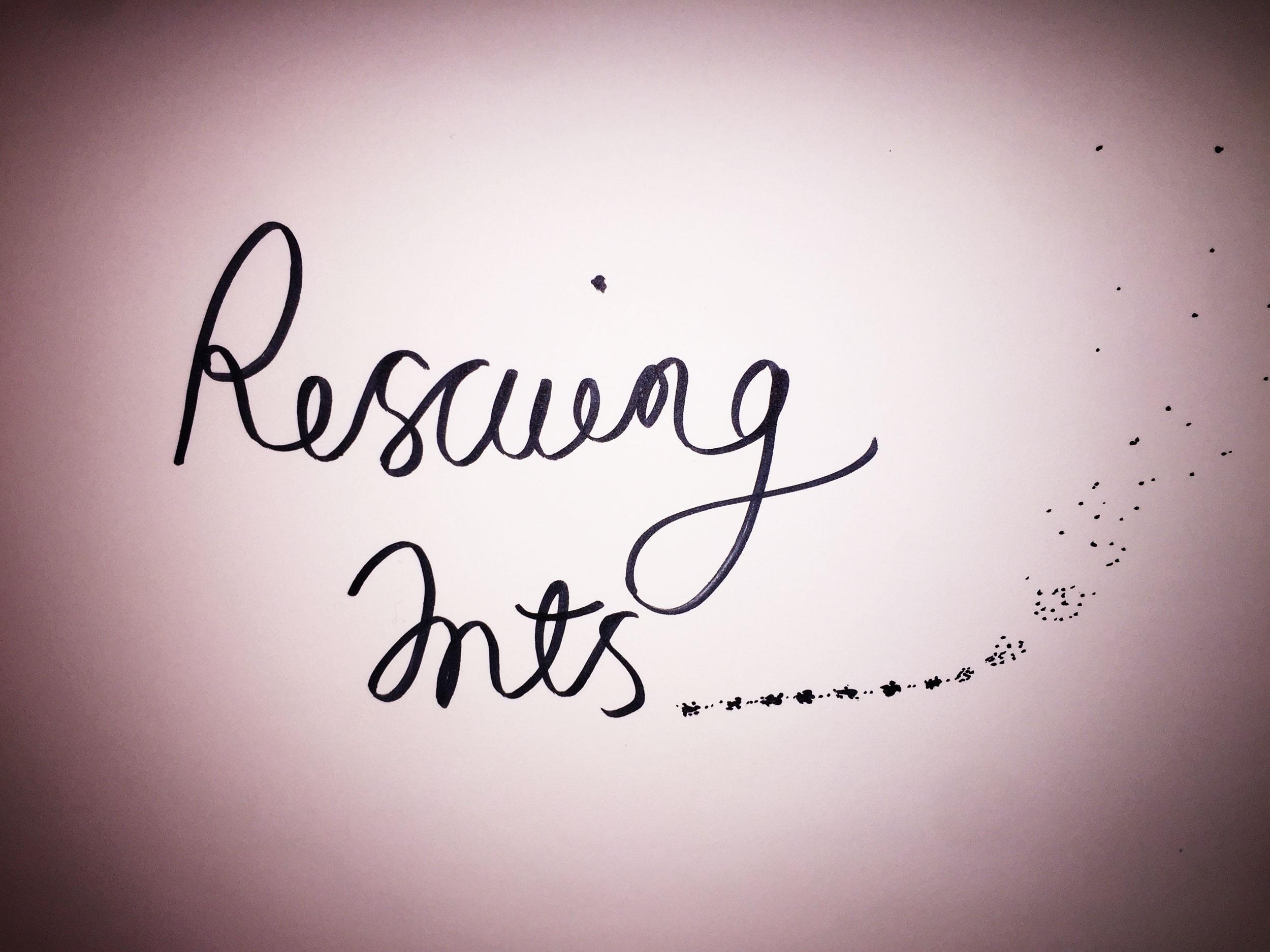 Rescuing ants. Drawing Luke Hockley.
