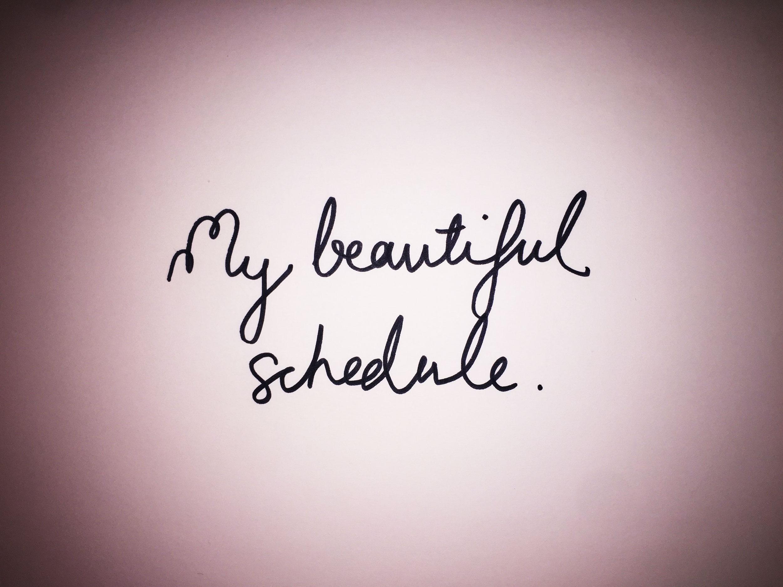 My beautiful schedule. Drawing Luke Hockley.