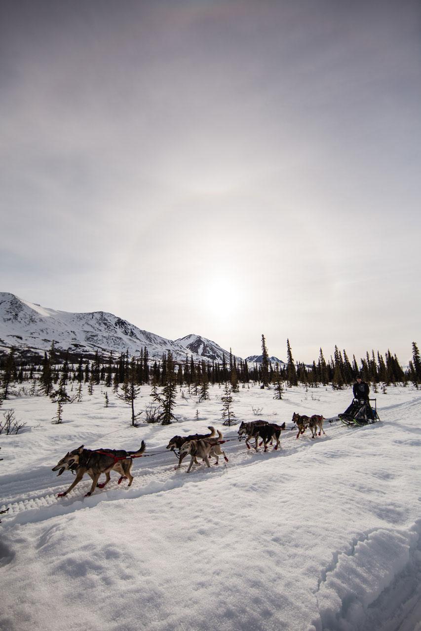 2017.04.28_1620USA_Alaska_Day3_Canon_John-Selects-48.jpg