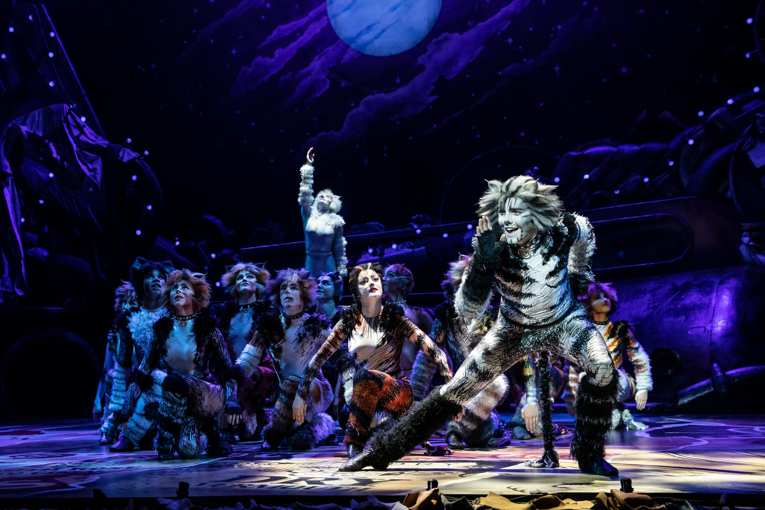 Dan Hoy as 'Munkustrap' and the North American Tour of CATS. Photo by Matthew Murphy