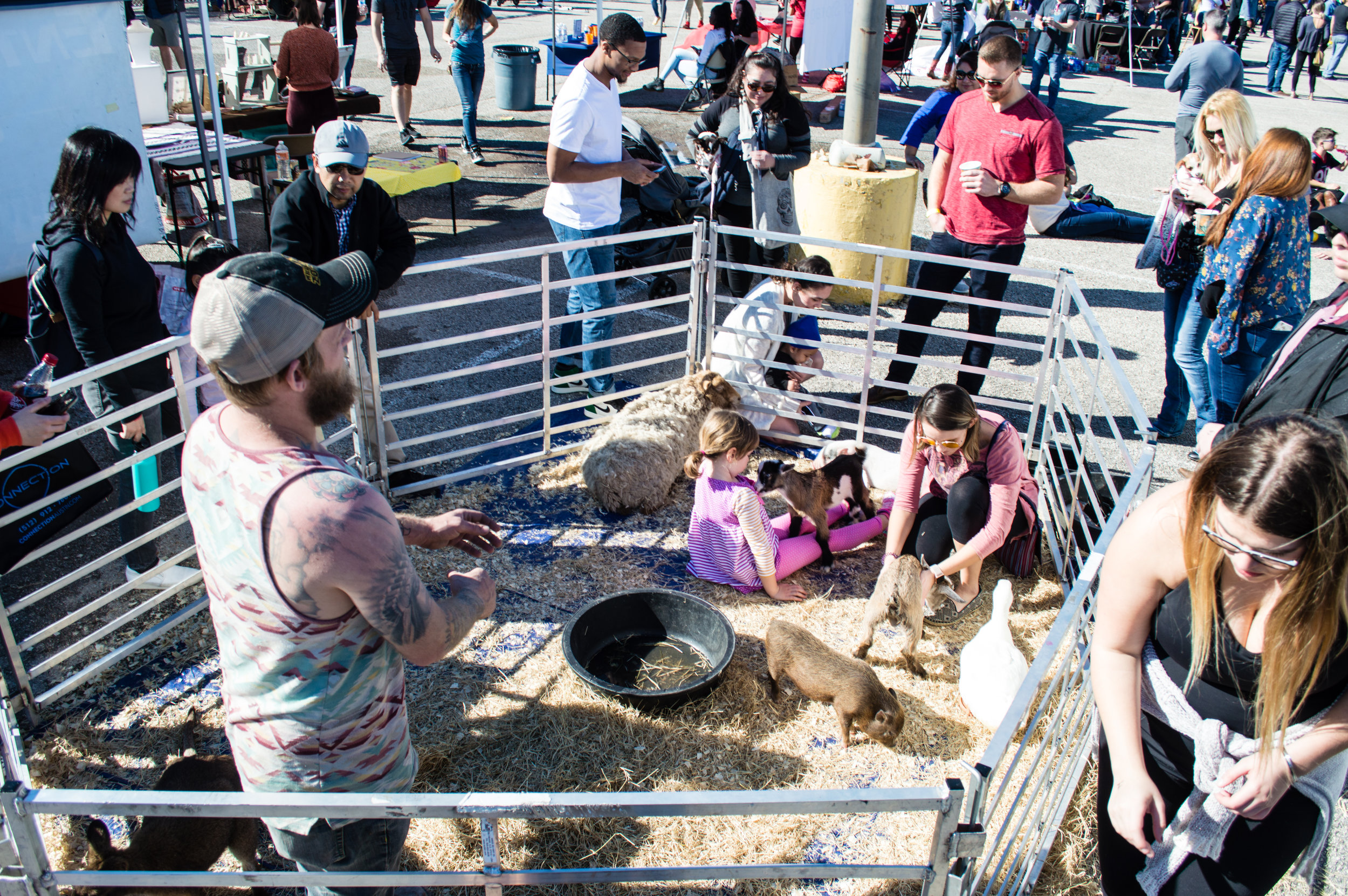 David Poku's Food Truck Festivals offer much more than just delicious food, including a small petting zoo. Photo by Nick Bailey