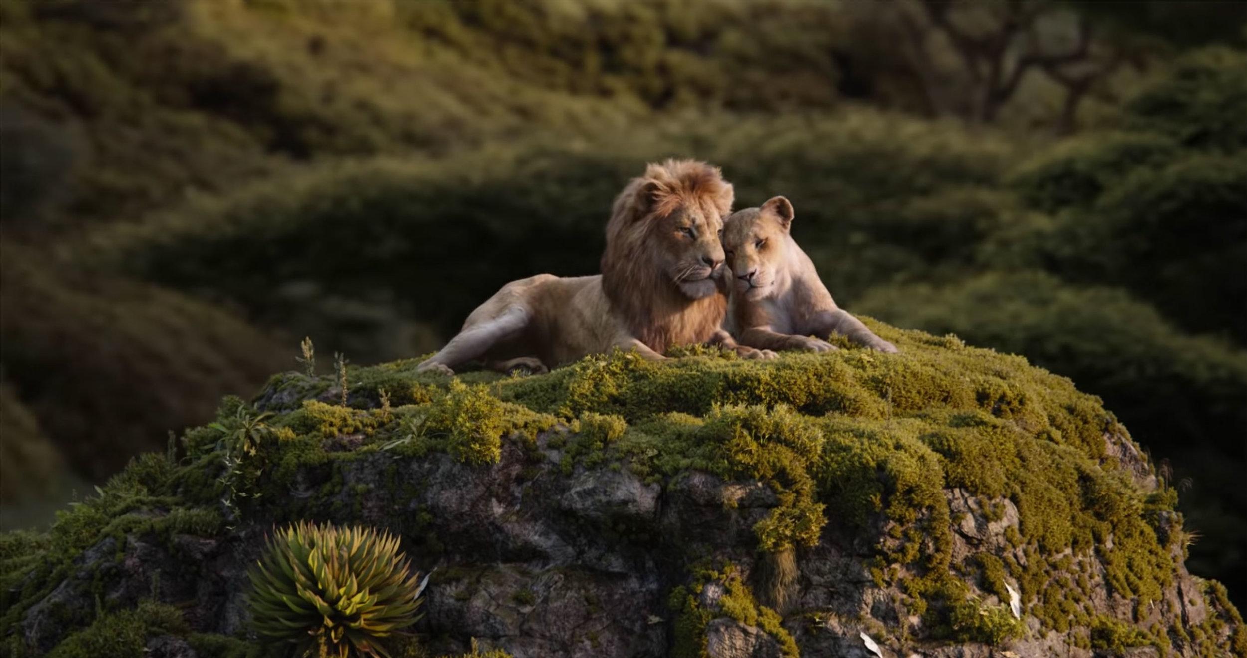 15. Lion King 04.jpg