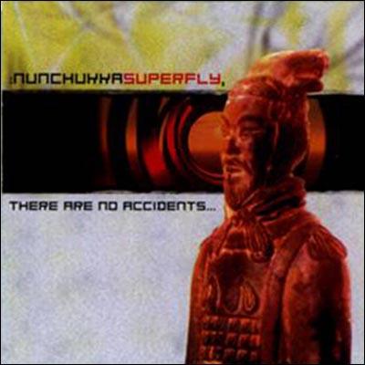 WER 04 NUNCHUKKA SUPERFLY.jpg