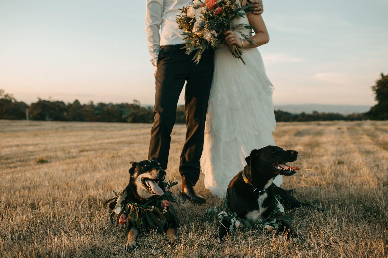 wandin-park-estate-wedding-yarra-valley_0006.jpg