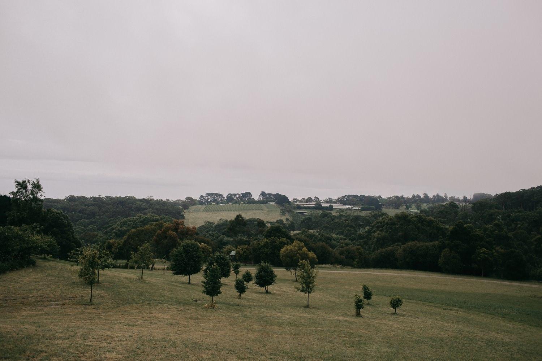 tanglewood-estate-mornington-peninsula-wedding_0006.jpg
