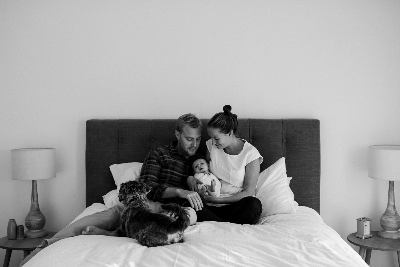 melbourne-newborn-lifestyle-photography_0070.jpg