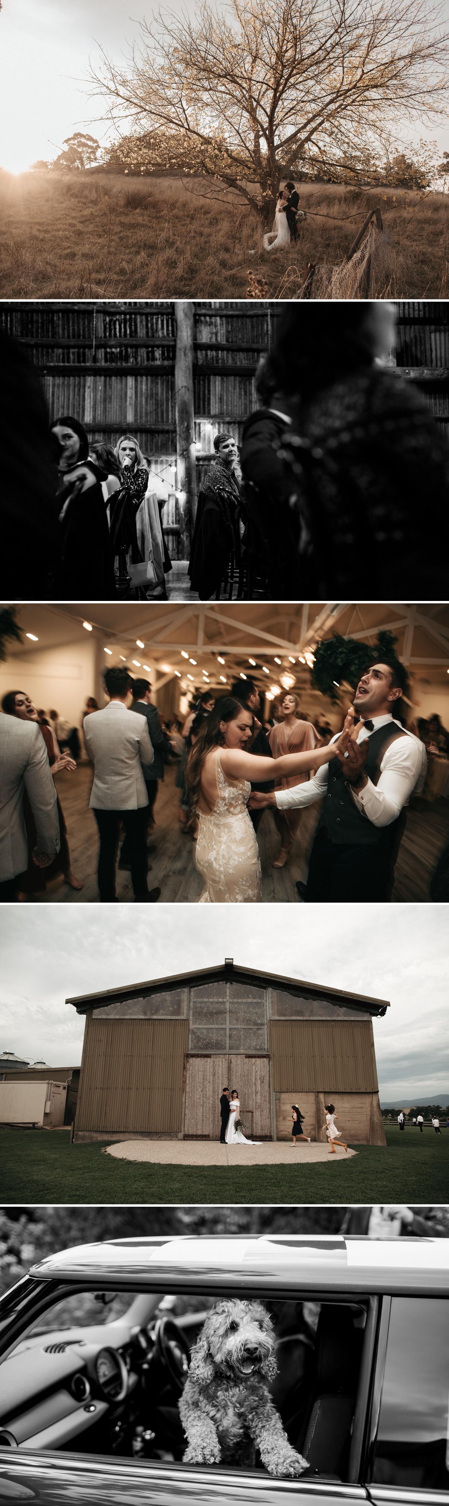 relaxed-wedding-photographer-melbourne_0011.jpg